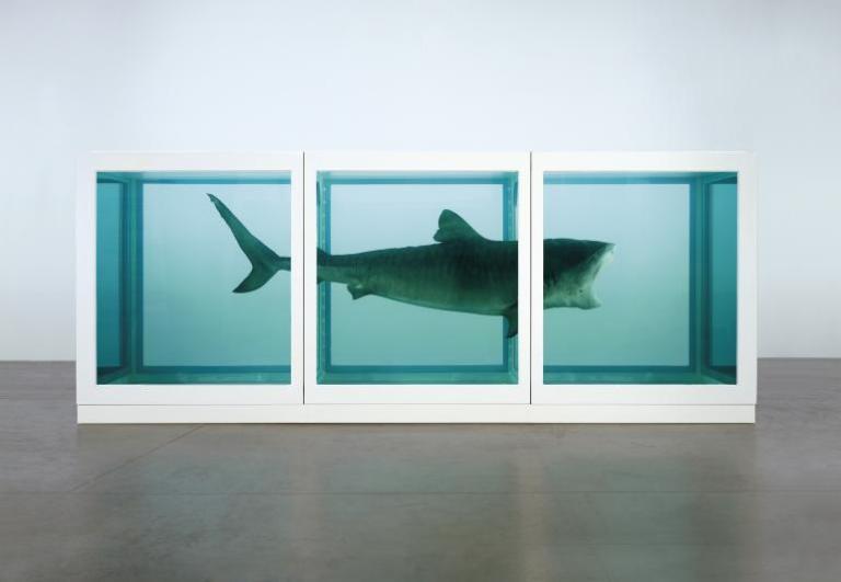"""Shark art or """"shart""""(source)"""